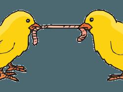Die Erkenntnisse aus dem TV-Duell - für Ihre Karriere