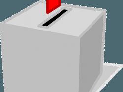 Wahlsieger: Die Karriere von Parteien