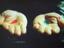 Der Matrix-Effekt - das Modell der Ich-Entwicklung als Augenöffner