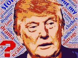 Trump: Hochbegabung und Dämlichkeit schließen sich nicht aus